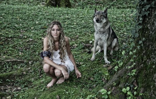 Картинка девушка, фон, волк