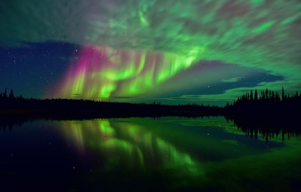 Картинка лес, небо, звезды, отражения, ночь, озеро, выдержка, арктика, тундра, северное сияния, Северная Канада