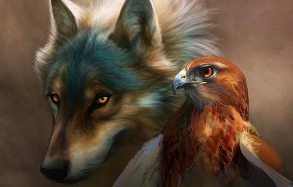 Картинка птица, орел, Волк, живопись, art, novawuff