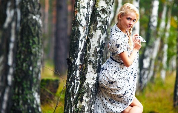 Картинка Девушка, Дерево, Лес, Блондинка, Модель, День, Красивая, Стоя, Позирует, Милашка, Aljena, Алёна, Береза