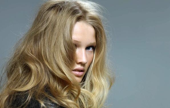 Картинка взгляд, девушка, лицо, серый, фон, модель, волосы, блондинка, Toni Garrn, Victoria's Secret Angel, Тони Гаррн