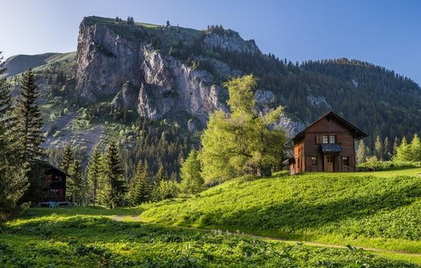 Картинка деревья, горы, дом, Швейцария, Альпы, Switzerland, Alps, кантон Вале, Canton of Valais