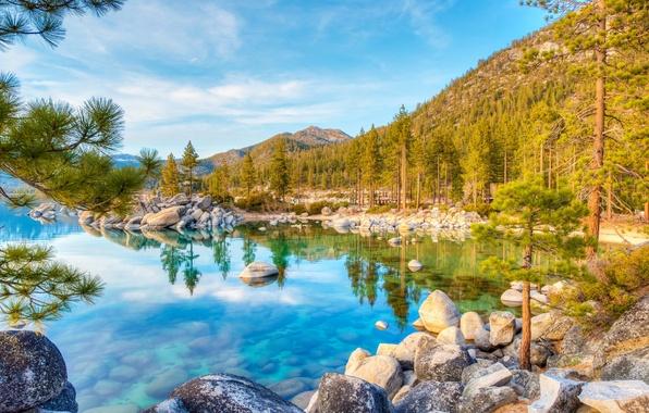 Картинка лес, вода, деревья, горы, ветки, озеро, отражение, камни, США, Lake Tahoe