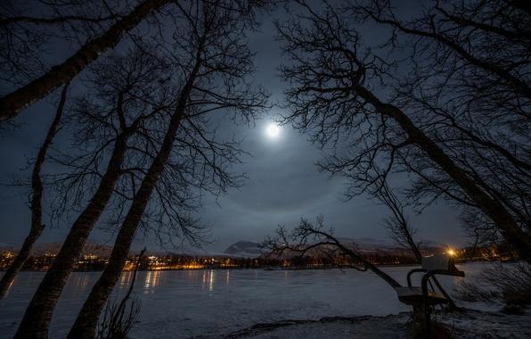 Картинка зима, скамейка, ночь, огни, озеро, парк, луна, Город