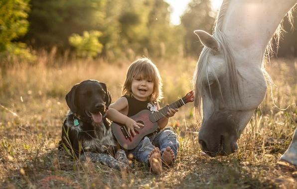 Картинка конь, лошадь, гитара, собака, мальчик, дружба, друзья