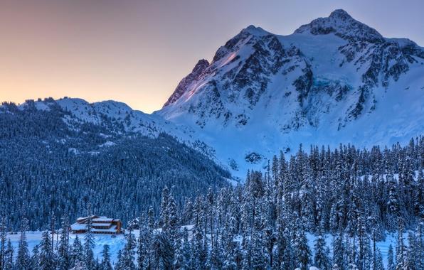 Картинка зима, лес, снег, природа, гора