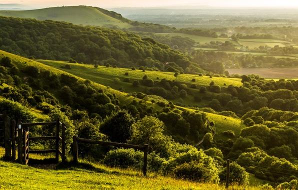 Картинка деревья, пейзаж, природа, холмы, забор, поля, Англия, вечер, ограда, зеленые, Великобритания, ферма, England, Great Britain, ...