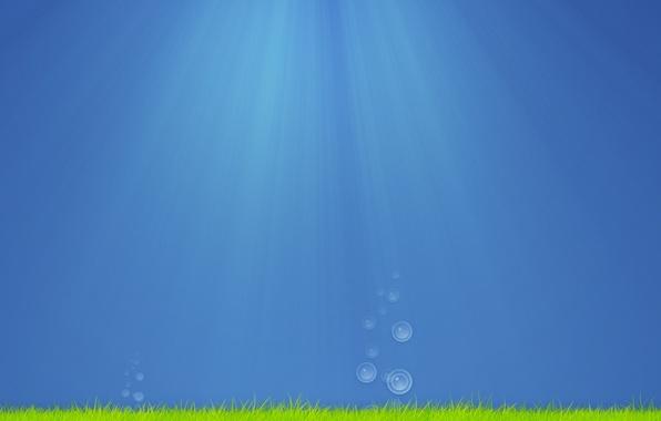Картинка море, трава, вода, капли, лучи, свет, водоросли, пузыри, креатив, настроение, океан, капля, минимализм, арт, пузырь, ...