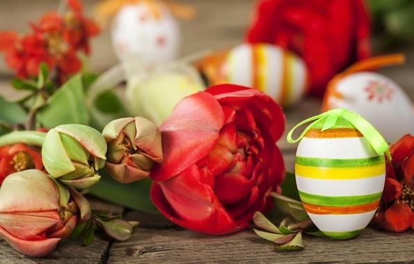 Картинка цветы, праздник, доски, яйца, Пасха, тюльпаны, Easter, крашенки
