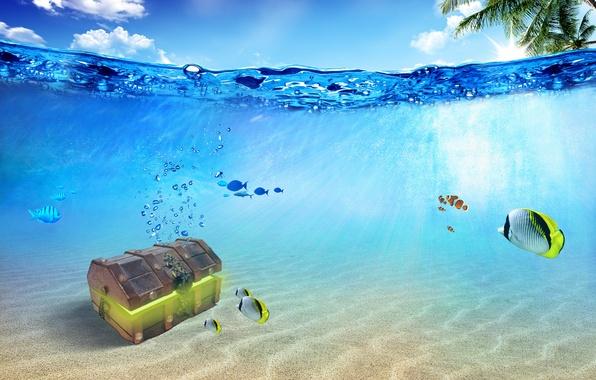 Фото океан подводный мир сундук рыбы