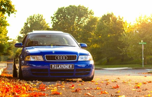Картинка осень, Audi, ауди, листва, перед, синяя, blue