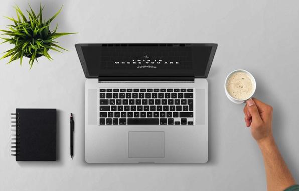 Фото обои блокнот, ноутбук, растение, пена, кофе, рука, чашка, вид сверху, стол, ручка