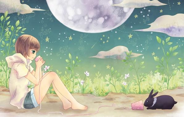 Картинка лето, ночь, настроение, луна, звёзды, аниме, кролик, девочка, телефон, двое, друзья, разговор