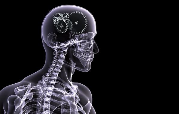 Картинка человек, скелет, шестеренки, рентген, мозг, черный фон