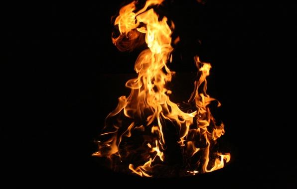 Картинка макро, ночь, природа, фон, огонь, пламя, обои, костер, языки пламени