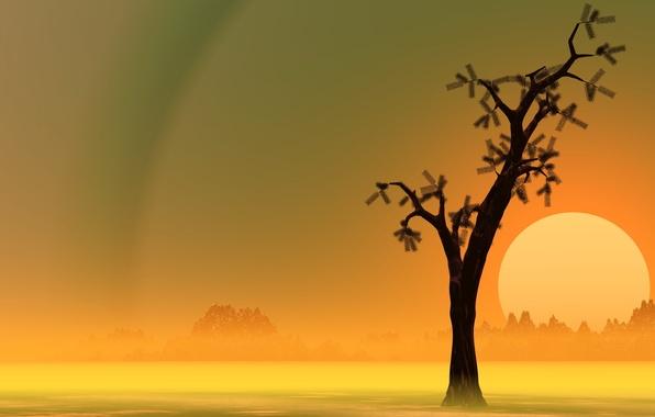 Картинка природа, абстракция, дерево, цвет, форма
