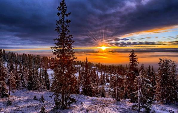 Картинка зима, небо, солнце, снег, деревья, пейзаж, закат, горы, природа, холмы, елки, долина, Норвегия