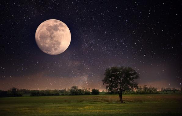 Картинка небо, звезды, пейзаж, ночь, природа, луна, moon, sky, landscape, nature, night, stars, full moon, полная …