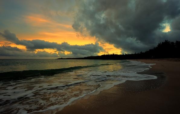 Картинка песок, море, волны, пляж, лето, небо, вода, облака, деревья, пейзаж, природа, фон, widescreen, обои, листва, …
