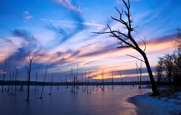 Картинка лед, зима, озеро, вечер, Деревья