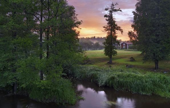 Картинка деревья, река, Швеция, Sweden, Närke, Stockås