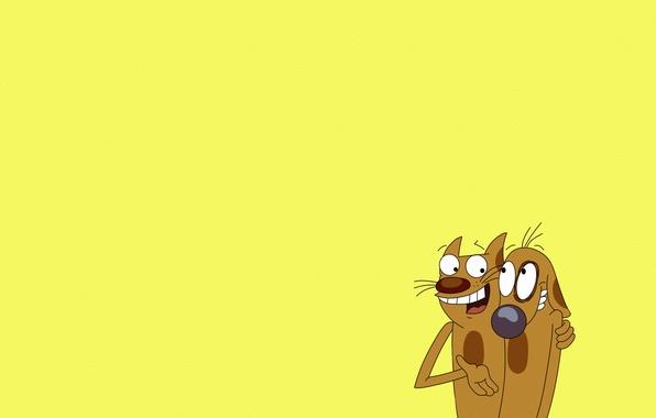 картинки пёс и кот