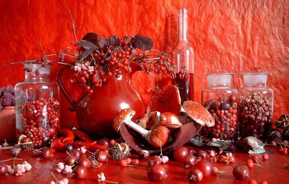 Картинка красный, ягоды, вино, грибы, натюрморт, каштан