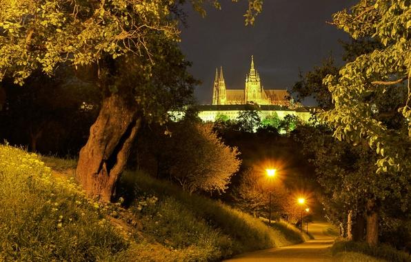 Картинка дорога, деревья, ночь, огни, Прага, Чехия, фонари, дворец