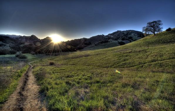 Картинка дорога, поле, пейзаж, утро