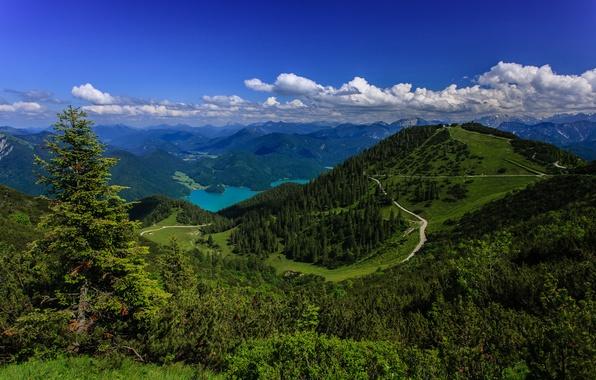 Картинка горы, озеро, Германия, панорама, леса, Germany, Bavarian Alps, Баварские Альпы