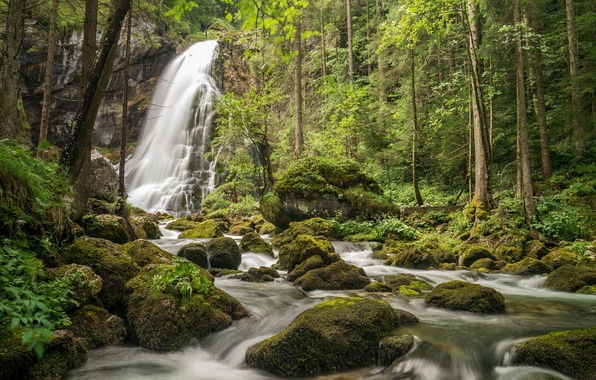 Картинка лес, деревья, камни, водопад, мох, Австрия, речка, Austria, Salzburg, Зальцбург, Gollinger Wasserfall, Golling Waterfall