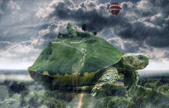 Картинка дом, воздушный шар, дождь, черепаха, арт, лестница, гигантская