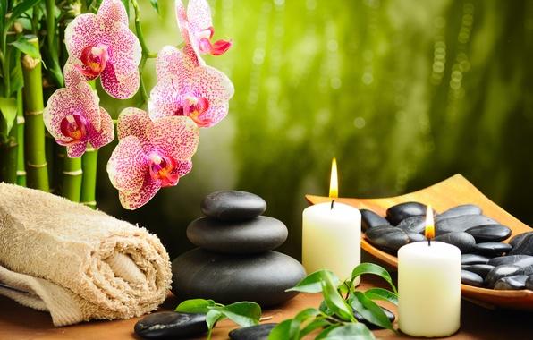 Картинка цветок, камни, полотенце, свечи, бамбук, орхидея, черные, спа, spa, массажные