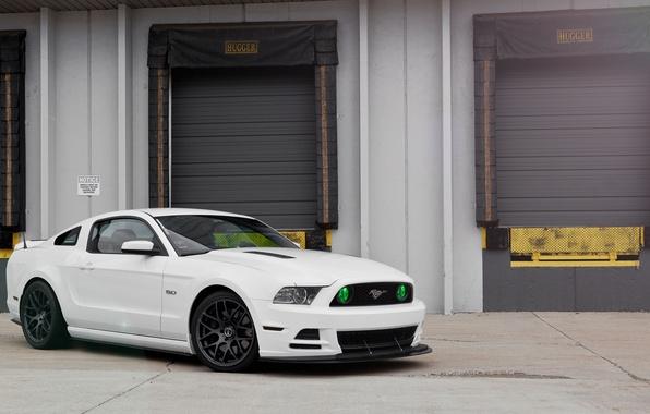 Картинка белый, Mustang, Ford, GT500, мустанг, форд, 5.0
