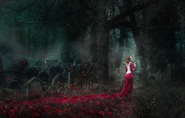 Картинка девушка, призрак, кладбище, Lady in Red
