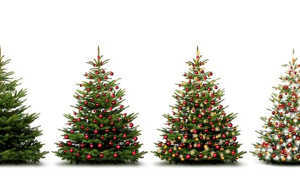 Картинка украшения, елки, Новый Год, Шарики, ёлки, Праздники, Гирлянда, Белый Фон