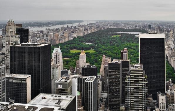 Картинка USA, grass, skyline, trees, New York, Manhattan, NYC, park, New York City, Central Park, buildings, …