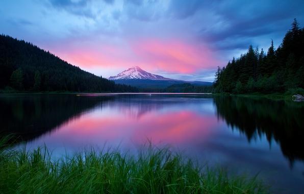 Картинка лес, небо, трава, горы, озеро, вечер