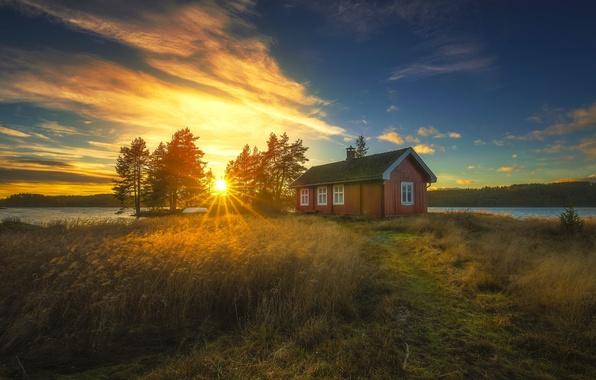 Картинка деревья, закат, озеро, дом, Норвегия, камыш, Norway, Рингерике, Ringerike