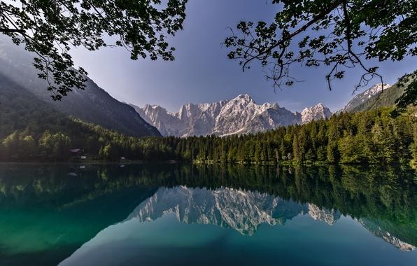 Картинка лес, деревья, горы, ветки, озеро, отражение, Калифорния, Йосемити, California, Национальный парк Йосемити, Yosemite National Park, …