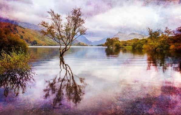 Картинка осень, вода, облака, деревья, пейзаж, горы, озеро, отражение, Англия, обработка, Уэльс, Great Britain, Wales, Snowdonia, ...