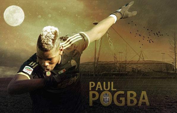Обои Paul Pogba, Juventus FC, Sport, Football, Wallpaper