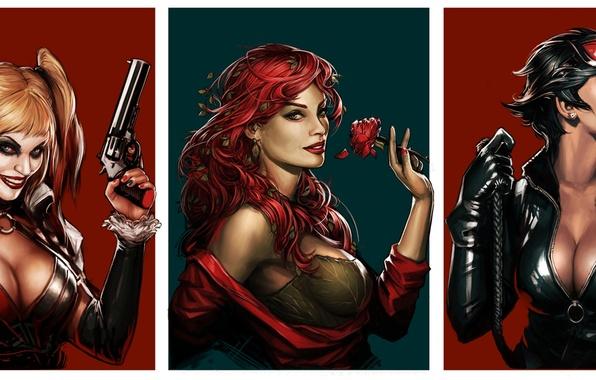 Картинка batman, harley quinn, DC Comics, Catwoman, Selina Kyle, Poison Ivy, Ядовитый Плющ