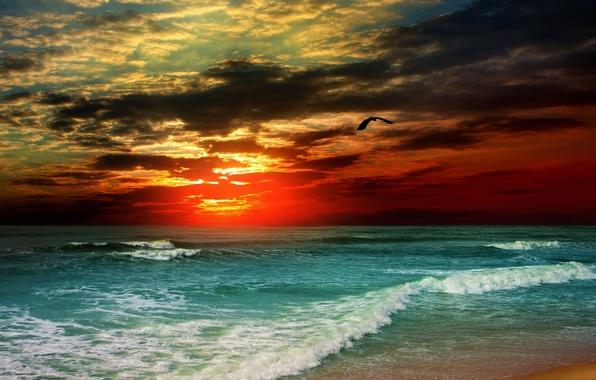 Небо тучи буря море шторм волны