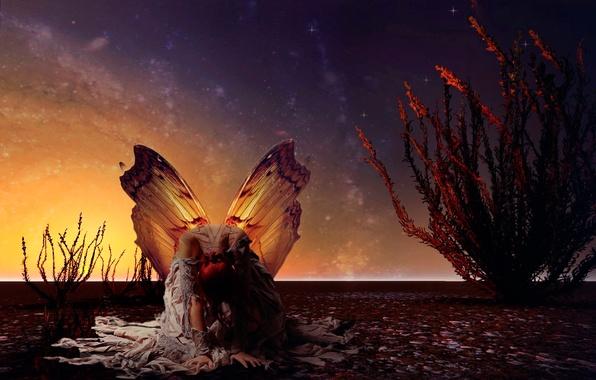 Картинка девушка, бабочка, крылья, звёзды, арт, мотылёк