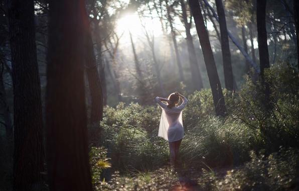 Фото девушка лес утро солнечный свет