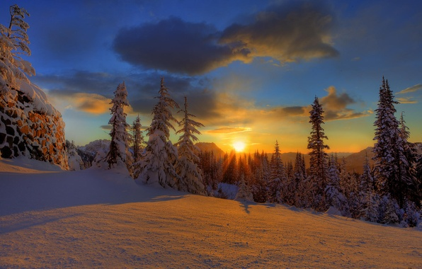 Обои зима лес снег елки небо закат