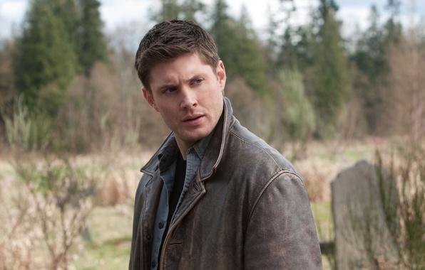Картинка мужчина, сверхъестественное, supernatural, jensen ackles, Dean Winchesner