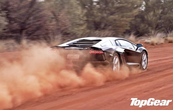 Картинка дорога, деревья, чёрный, пыль, Lamborghini, суперкар, вид сзади, top gear, LP700-4, Aventador, ламборгини, высшая передача, …