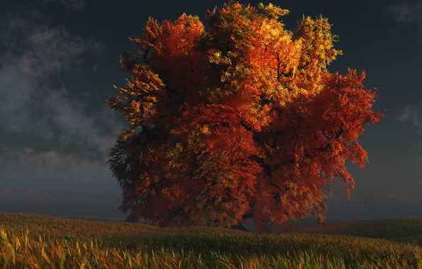 Фото обои осень, трава, дерево, digital, red and gold